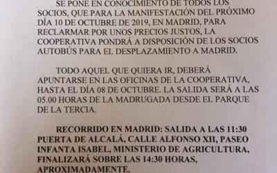 ¡¡MANIFESTACIÓN DEL SECTOR OLIVARERO ESPAÑOL!!